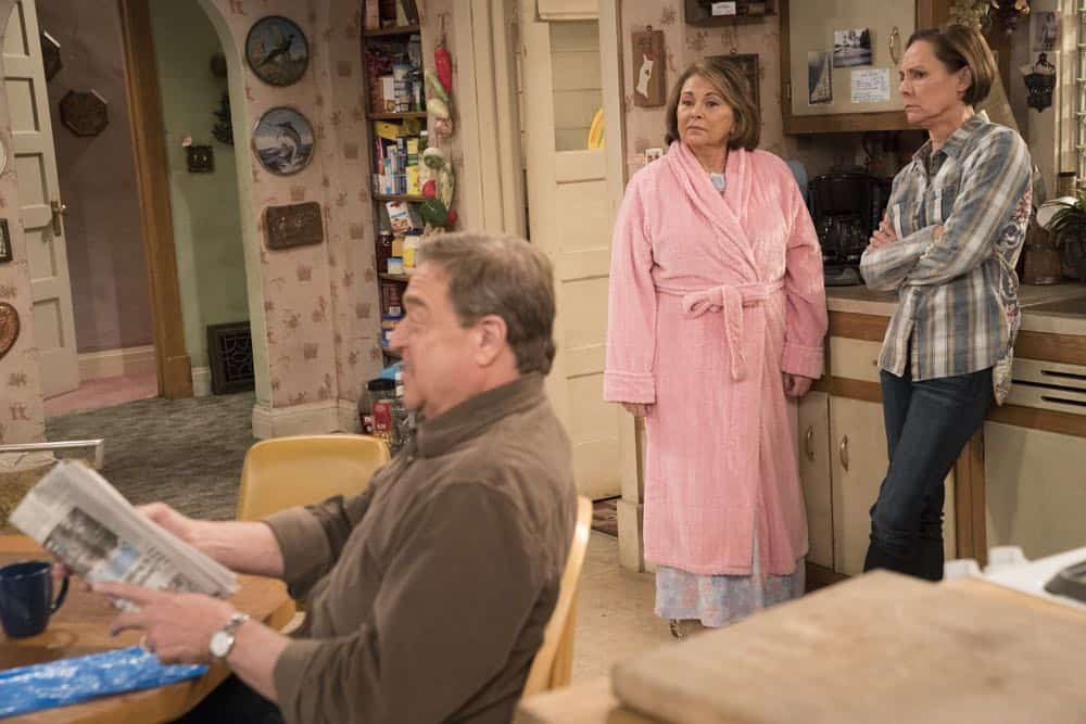 Roseanne Episode 6 Season 10 No Country for Old Women 04