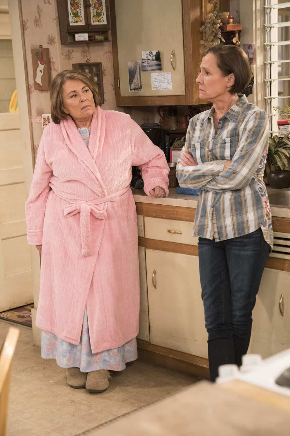 Roseanne Episode 6 Season 10 No Country for Old Women 06