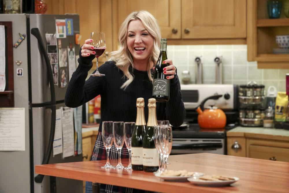 The Big Bang Theory Episode 24 Season 11 The Bow Tie Asymmetry 13
