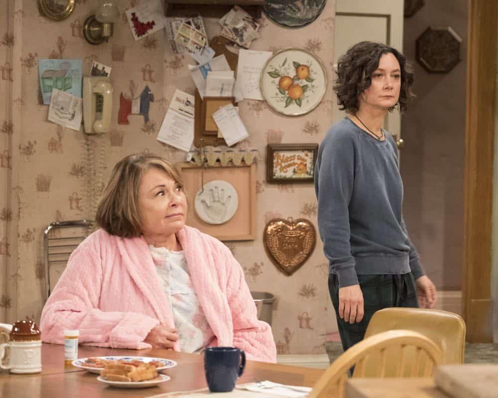 Roseanne Episode 8 Season 10 Netflix and Pill 20