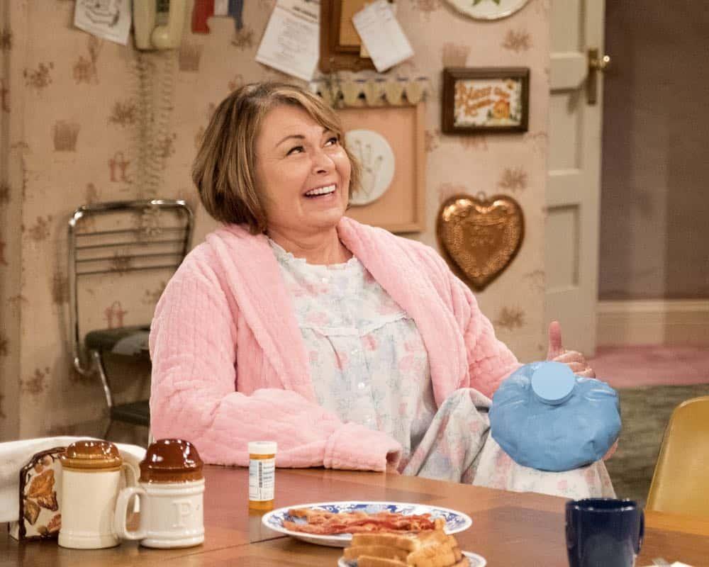 Roseanne Episode 8 Season 10 Netflix and Pill 13