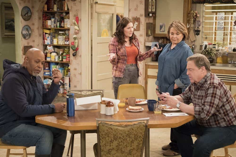 Roseanne Episode 9 Season 10 Knee Deep 03