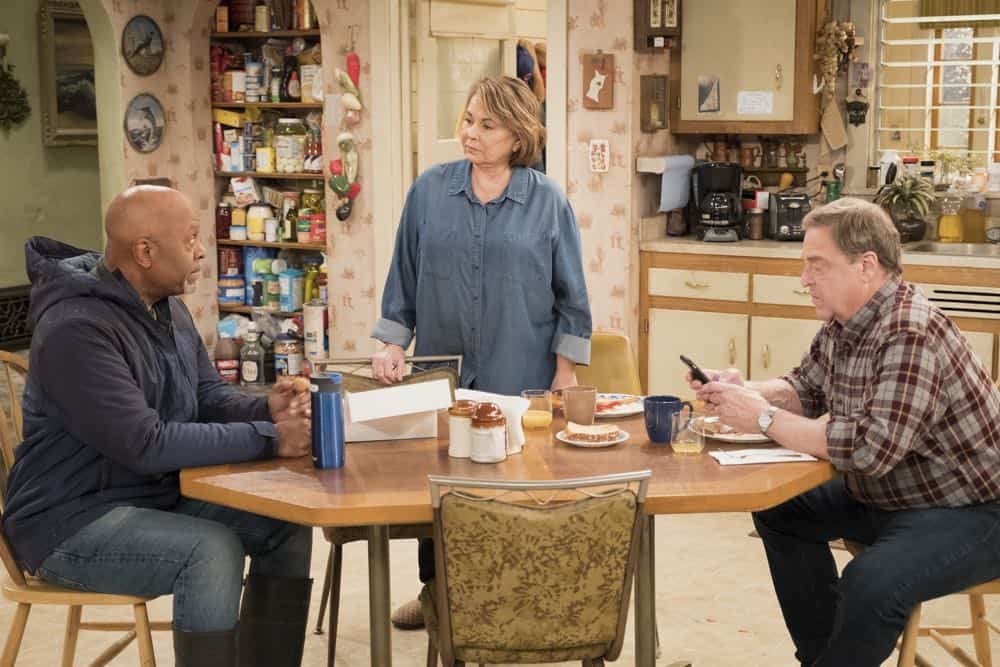Roseanne Episode 9 Season 10 Knee Deep 02