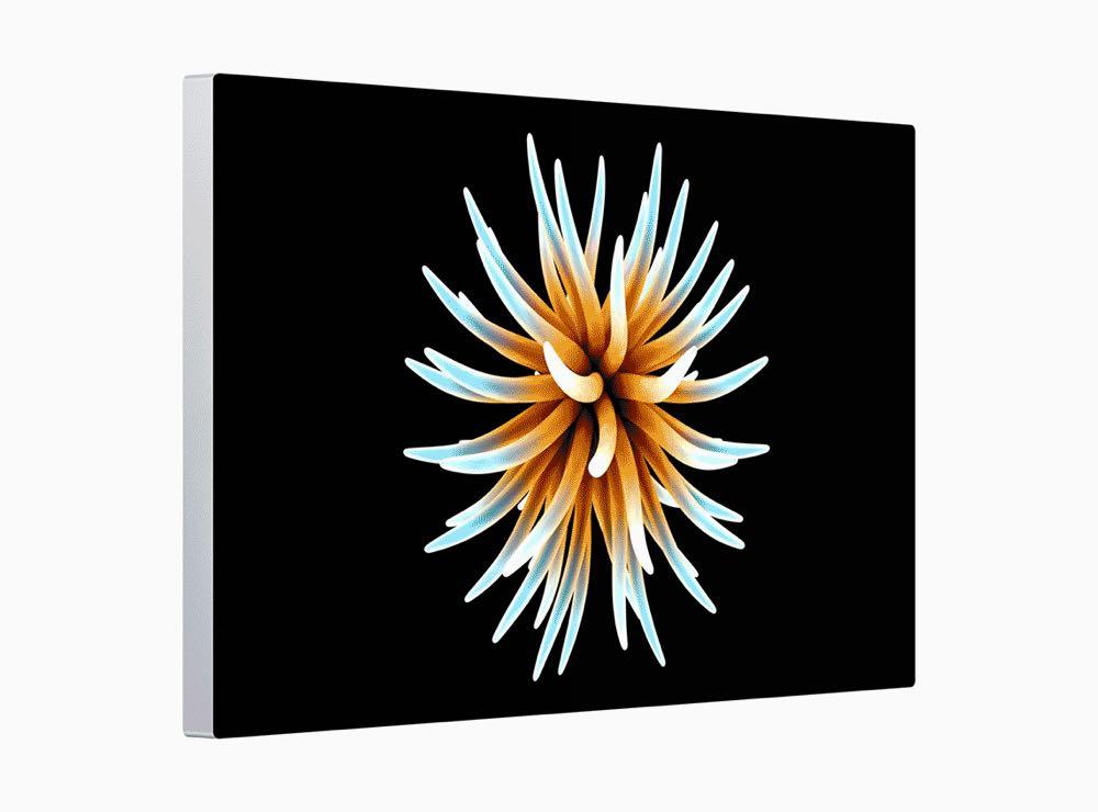 Apple Mac Pro Display Pro Display Pro XDR Retina 060319