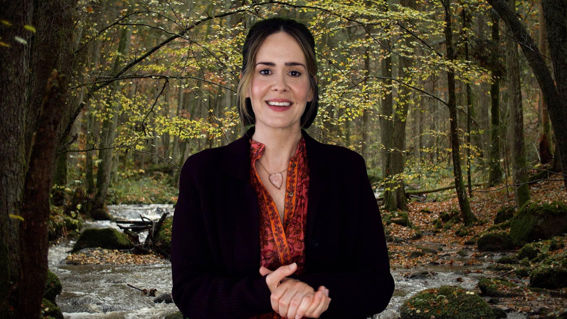 Sarah Paulson HBO Coastal Elites