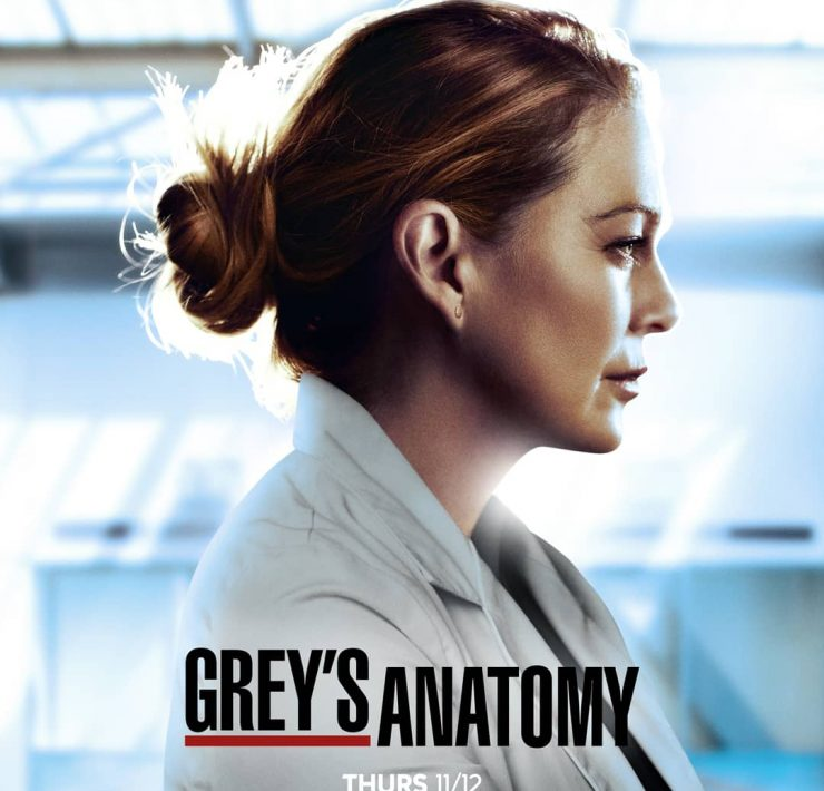 Grey's Anatomy Season 17 Poster Key Art