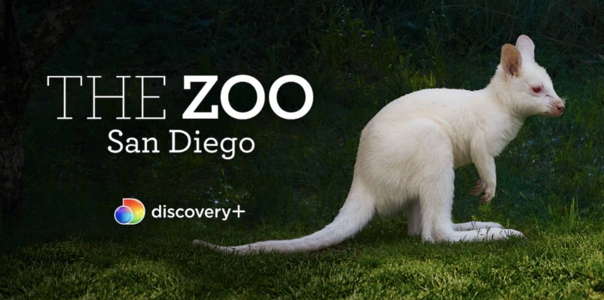 The Zoo San Diego Discovery