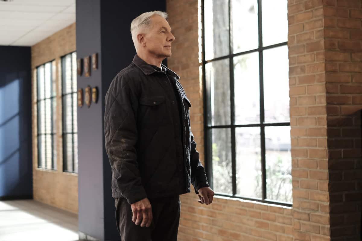 Gibbs Watchdog Episode NCIS